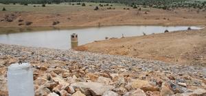 """Çiftçilere gece sulama yapılması uyarısı DSİ Genel Müdürü Kaya Yıldız: """"Buharlaşma kayıplarını önlemek için sulamayı gece yapmamız lazım"""""""