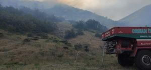 Bingöl'de iki köyde çıkan orman yangını büyümeden söndürüldü
