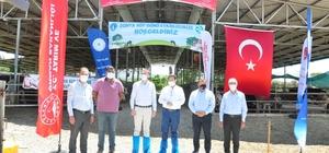Milas'ta Dünya Süt Günü kutlandı