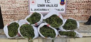 İzmir'de 5 ilçede uyuşturucu operasyonları: 6 gözaltı