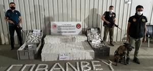Sınır kapısında 14 bin 720 paket kaçak sigara ele geçirildi Son zamanların en yüksek sigara kaçakçılığı önlendi