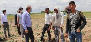Aksaray'da mevsimlik tarım işçilerinin her türlü ihtiyaçları gideriliyor