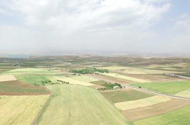 """DSİ Genel Müdürü Yıldız,' """"Elazığ'da 185 bin 900 dekar tarım arazisi sulanacak"""""""