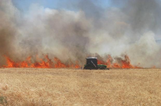 Araban'da 220 dönüm buğday tarlası yandı
