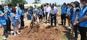 Yenişehir, jakaranda koruluğuyla renklenecek Yenişehir Belediyesi, Limonluk Mahallesinde jakaranda koruluğu oluşturuldu. Başkan Özyiğit, jakaranda ağaçlarını toprakla buluşturdu
