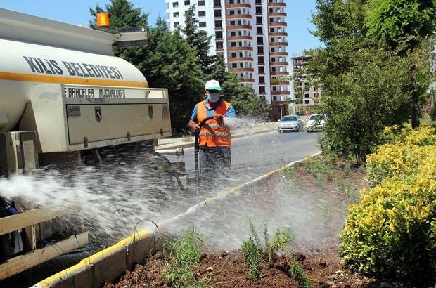 Kilis'te park refüj ve bulvarların bakımları yapılıyor
