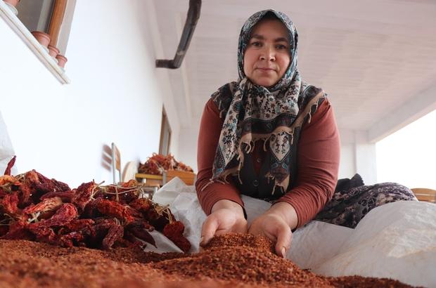 """Tescilli biberde fidanlar toprakla buluştu Biber üreticisi Şengül Meçin; """"Türkiye'nin dört bir yanına gönderiyoruz"""""""
