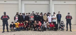 Antalya'da ormanlık 73 düzensiz göçmen yakalandı