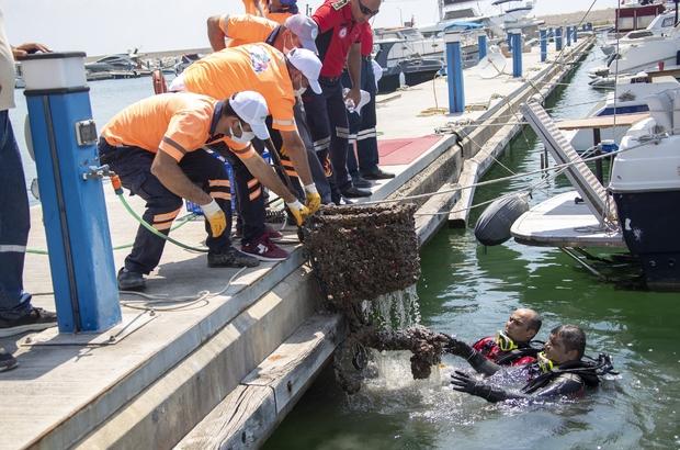 Denizden çıkanlar 'pes' dedirtti Mersin'in tek mavi bayraklı marinası olan Mersin Marinada yapılan deniz dibi temizliğinde alışveriş arabası bile çıktı