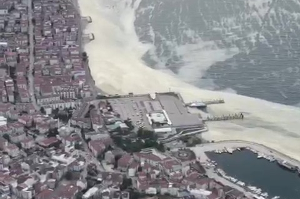 Marmara'da görülen deniz salyasına çare: 'Çatı Operasyonu' Uçakla Marmara'daki deniz salyasını görüntüleyen Safa Gönen: ''Herşeyi devletten beklemeyin. Hep birlikte teknelerimizle çatı operasyonu yaparsak bu sorunu çözebiliriz''