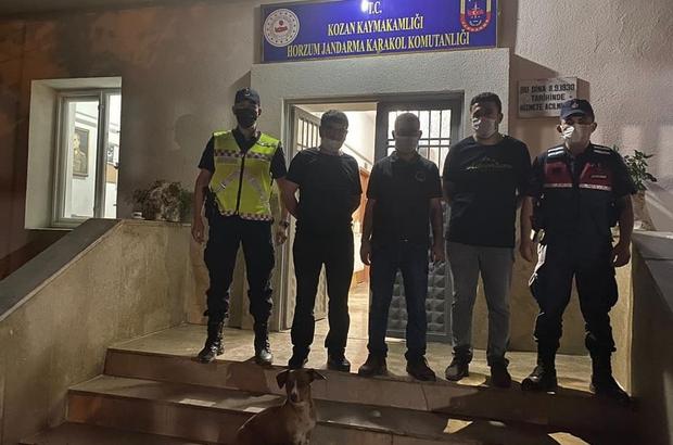 Oklu kirpi avlayan 4 kişiye 12 bin TL ceza