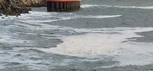 İskenderun kıyılarında beyaz tabaka endişelendirdi Kıyılardaki beyaz tabakanın müsilaj olmadığı, incelemenin sürdüğü bildirildi