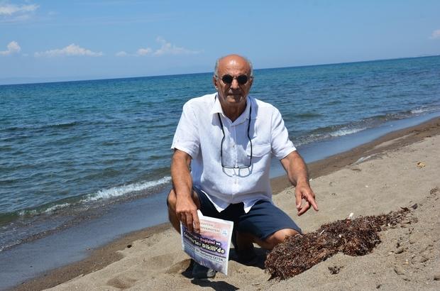 Marmara'da deniz salyası, İzmir'de Sargassum tehdidi Kıyılarımızdaki yeni tehlike: Sargassum istilası Prof. Dr. Biyolog Barbaros Çetin, deniz salyası felaketinin ardından Dikili kıyılarında görünen başka bir tehlikeye dikkat çekti