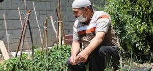 Ereğli Belediyesi tarafından dağıtılan fideler mahsullerini başladı
