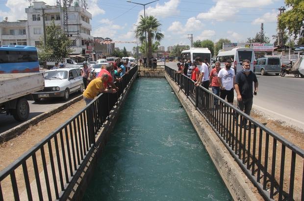 """Serinlemek için girdiği sulama kanalında kayboldu Adana'da serinlemek için sulama kanalına giren iki arkadaştan biri """"beni kurtarın boğuluyorum, yardım edin"""" dedikten sonra suda kayboldu"""