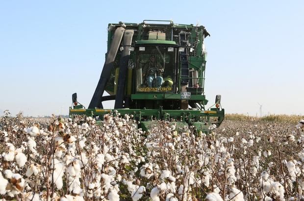 Aydın'da bitkisel üretim destek ödemeleri yarın başlıyor