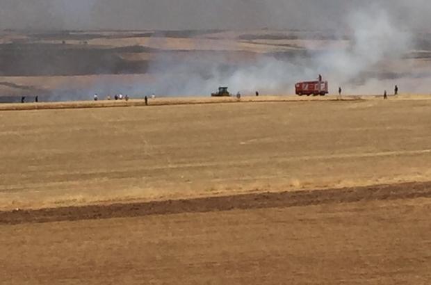 Diyarbakır'da çıkan yangında 200 dönümlük buğday tarlası küle döndü