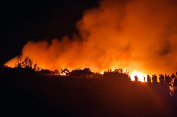 Nizip'te orman yangını Çıkan orman yangınında 200 dönüm alan kül oldu Yangın çok sayıda ekibin müdahalesi ile kontrol altına alındı