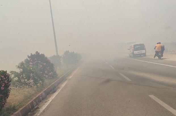 İslahiye'de anız yangını trafiği durdurdu