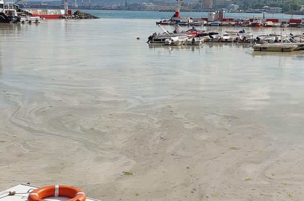 Kabus hızla yayılıyor: Sahilin tamamını kapladı