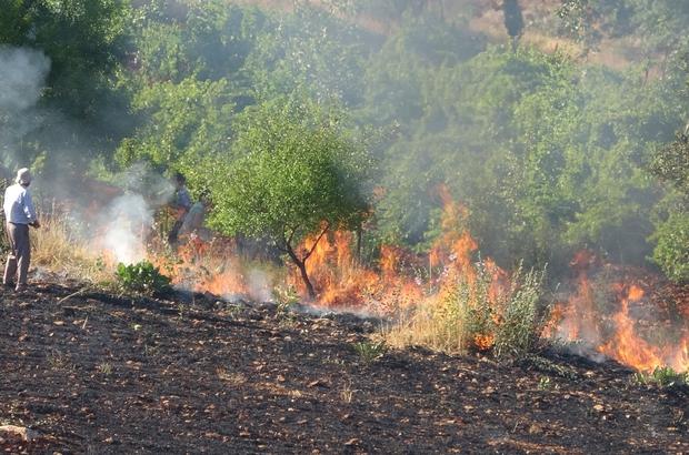 Orman yangınına ilk müdahale gazeteciler ile vatandaşlardan geldi Vatandaşlar su şişeleriyle alevlere müdahale etti Bir yandan çekim yaptı, bir yandan alevleri söndürdü