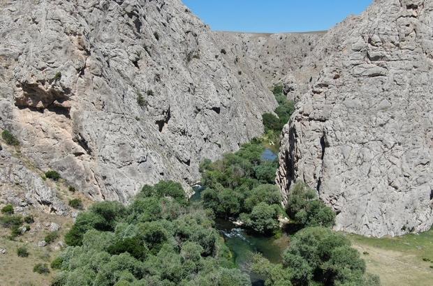 Kaymakam tanıtım için kendini Tohma çayının sularına bıraktı Sivas'ta Gürün İlçe Kaymakamı Ahmet Tan ve doğa sporcusu Erol Bozkuş, Terelik kanyonunda rafting ve kano yapılacağını ispatlamak için kendilerini Tohma çayının azgın sularına bıraktı