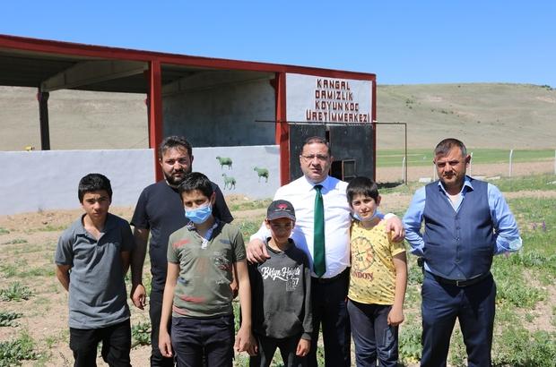 Sivas'ta tek,  4 bin kapasiteli Sivas'ın Kangal ilçesinde bulunan ve 4 bin kapasiteye sahip olan Damızlık Koyun-Koç Üretim Merkezi ilde tek olmaz özelliği taşıyor