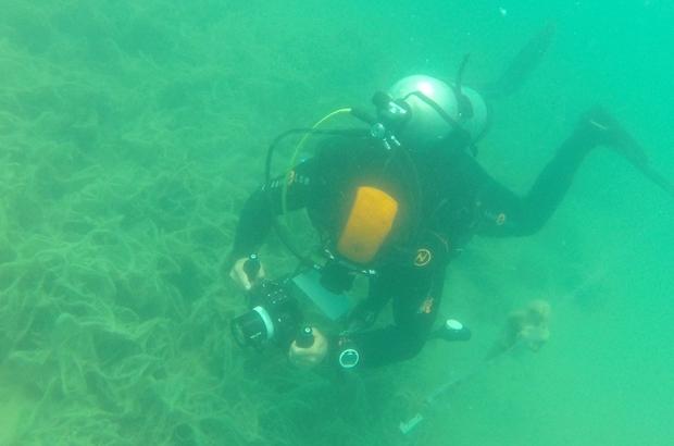 Müsilaj Marmara'da 'deniz çayırı'nı da yok ediyor Deniz çayırının üzerini kaplayan müsilaj su altı kamerasıyla görüntülendi