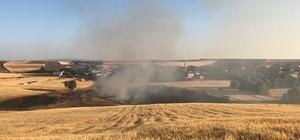 Tunceli'de 15 dönüm ekili alan yandı