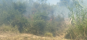 Dalaman'da cezaevi çevresi ve TİGEM arazilerinde yangın (1) Yangın nedeniyle tüm şehir duman altında kaldı