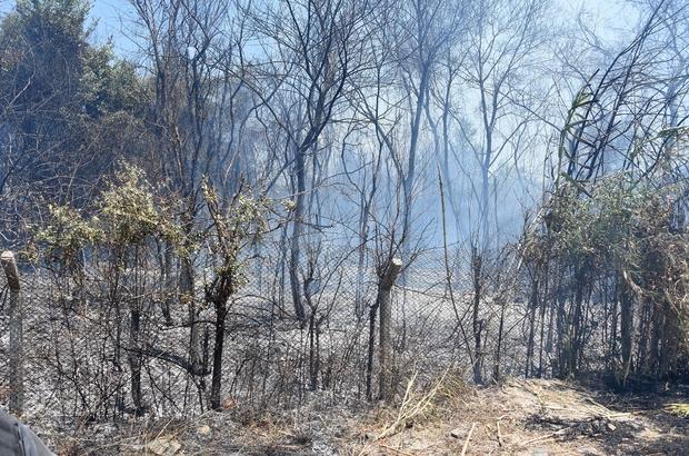 Dalaman'da cezaevi çevresi ve TİGEM arazilerinde yangın (2)