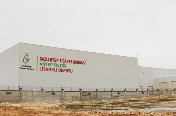 Türkiye'nin ilk ve tek Antep fıstığı lisanslı deposu Gaziantep'te açılıyor Açılışa Bakan Varank da katılacak