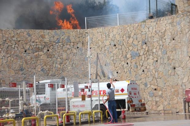 Bodrum'daki yangın akaryakıt istasyonuna ulaşmadan söndürüldü
