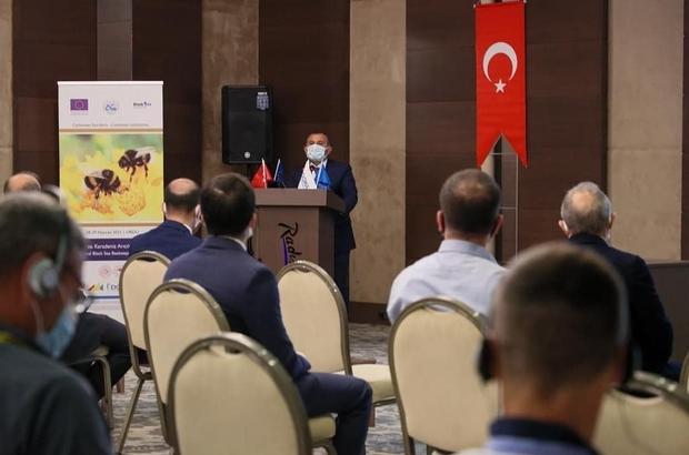 5 ülkeden arıcılık iş birliği Arıcılıkta Karadeniz iş birliği