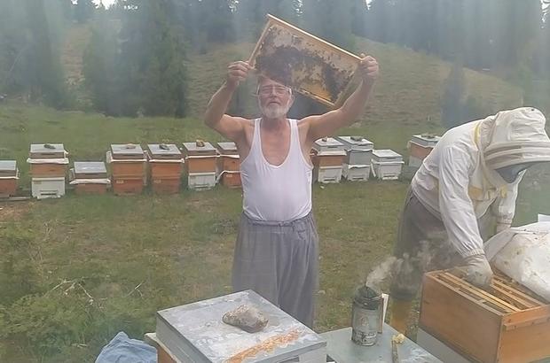 Gömleğini çıkarıp arıları sevdi Kahramanmaraşlı bal üreticisi yaşlı adam görenleri şaşırttı