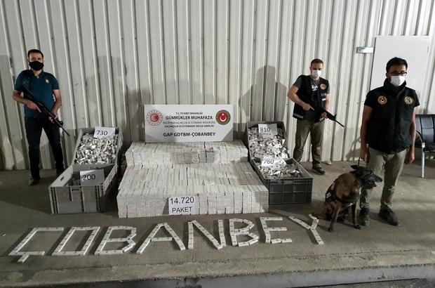 Gümrük kapılarında kaçakçılığa geçit yok GAP gümrük kapılarında 45 milyon liralık kaçak eşya ele geçirildi