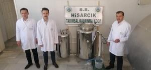 Hisarcık'ta adaçayı yağı deneme üretimi
