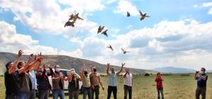 Kayseri'de 550 keklik doğaya salındı