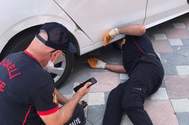Ezmemek için durdu, arabaya girince ekipler harekete geçti Arabanın altına giren kediyi çıkarabilmek için yoğun çaba sarf ettiler