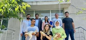 Ağrı'da kaz desteği ile kadınlara iş imkanı
