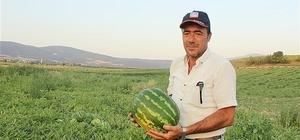 """Bu yıl 32 bin 500 ton karpuz hasadı bekleniyor Osmaneli Ziraat Odası Başkanı Orhan Uğur; """"326 çiftçi bu yıl 4 bin 650 dönüm araziye karpuz ekimi yaptı"""" """"Tarım sektörünün ülkemiz ekonomisinin temel taşıdır"""""""