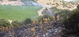 Sarıgöl'de makilik alanda yangın