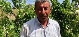 """(Özel) Şehit babası bahçe çapalarken İHA'ya konuştu 15 Temmuz şehidi Cennet Yiğit'in babası Yahya Kemal Yiğit: """"Evlatsız yaşanıyor, vatansız yaşanmıyor"""""""