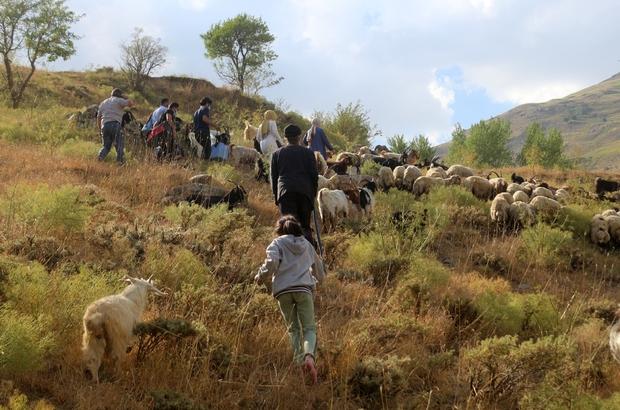 Sağlıkçılar dağ bayır demeden patikaları aşarak aşı yapıyor Sağlık ekiplerinin 3 bin rakımdaki zorlu aşılama çalışmaları sürüyor Tarım ve hayvancılıkla uğraşan vatandaşın ayağına aşıyı götürdüler