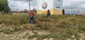 Hisarcık Belediyesinden yabani ot temizliği