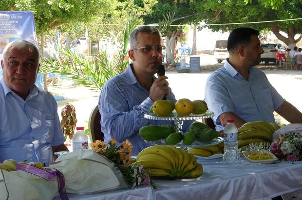Kültür ve sanat festivalinde muz ve tropik meyve yetiştiricileri yarıştı Yumurtalık Kaymakamı Hasan Hüseyin Vural, tropik meyve üretiminde önemli bir merkez olma yolunda olan ilçede Ayas Muzu'nun markalaştığına dikkat çekti