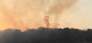 Manisa'da ormanlık alanda 6 farklı noktada yangın Yangında 10 hektar örtülük alan ve 5 hektarlık zirai alan zarar gördü
