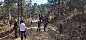 Altıntaş'ta orman yol yapım çalışmaları