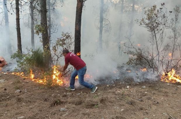 Orman kahramanları çalılarla yangının büyümesini engelledi