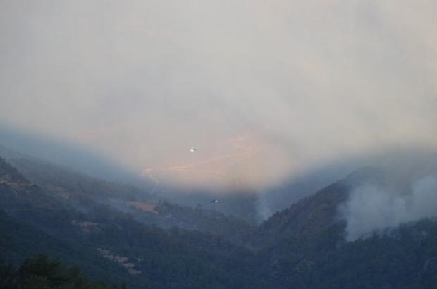 Mersin'deki orman yangınına havadan müdahale edilmeye başlandı Mersin'in Aydıncık ilçesinde çıkan orman yangına, sabahın erken saatlerinde havadan da müdahale edilmeye başlandı